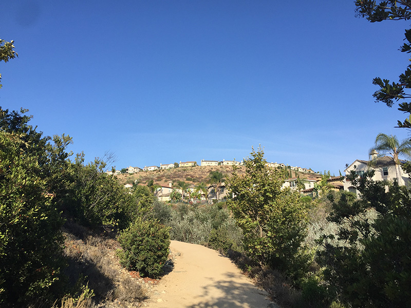 san-elijo-hills-community-with-houses-at-the-top-of-a-hiking-trail