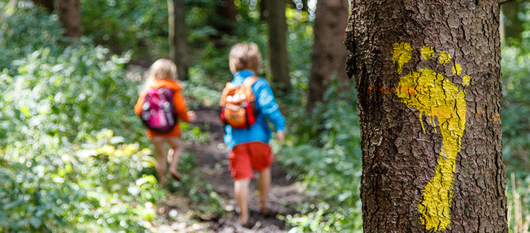 Kids walking on hiking trail with yellow footprint on tree